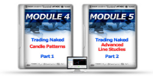 forex millionaires system-dts Module 4 and 5